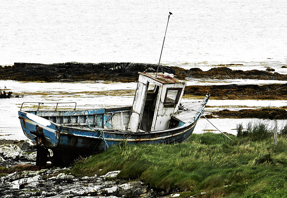 photoblog image Washed up in the Connemara